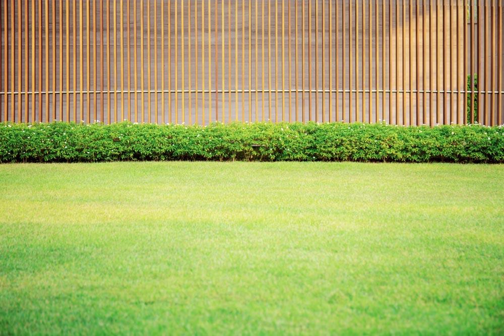 Fertiger Rasen nach dem Aerifizieren