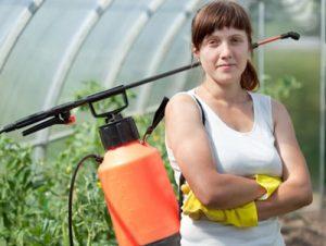 Pestizide gegen Unkraut
